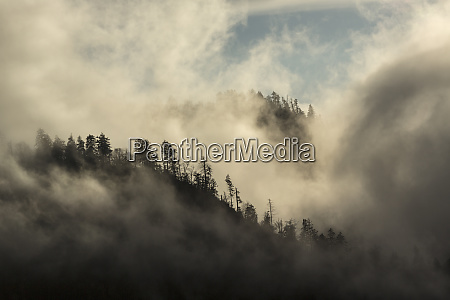 misty cloud filled valley from morton