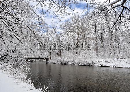 usa pennsylvania philadelphia snow covered trees