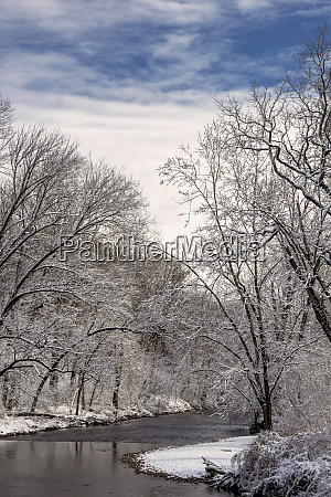 usa pennsylvania philadelphia snow covered trees