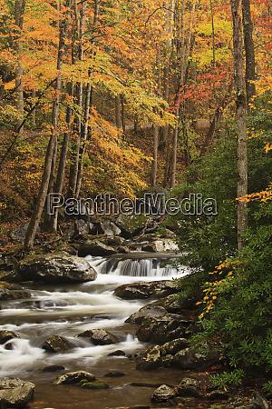 usa tennesse fall foliage along a