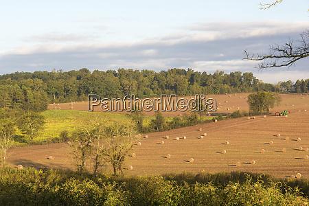 usa tennessee pastoral farm scene in