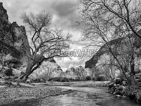 usa utah zion nationalpark virgin river