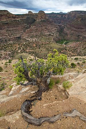 little grand canyon san rafael swell