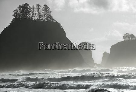 la push washington state pacific ocean
