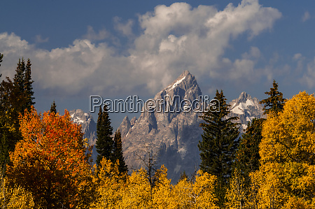usa wyoming grand teton national park