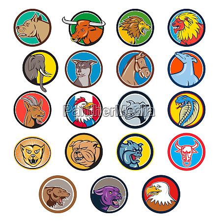 cartoon animals head circle set