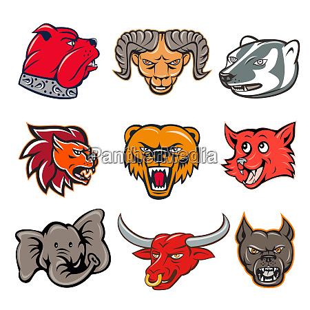 animal wildlife mascot set