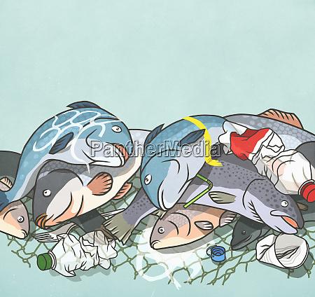 tote fische und plastikflaschen in netzen