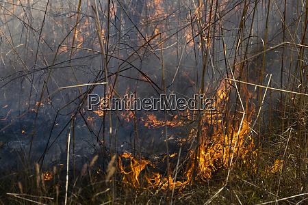 vorbeugendes pflaster brennendes feuer