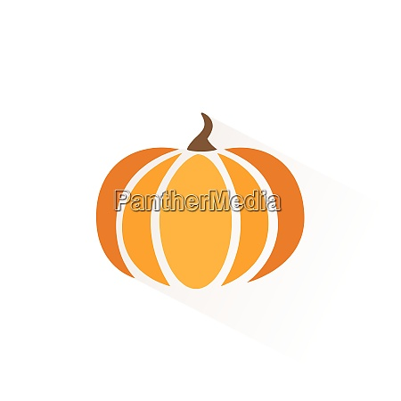pumpkin icon with shadow flat vector