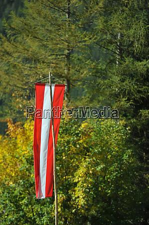 flagge von OEsterreich