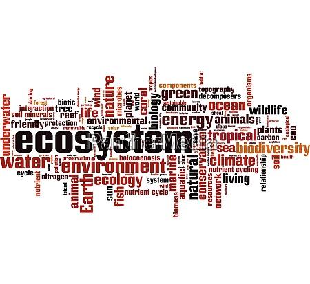OEkosystem wortwolke