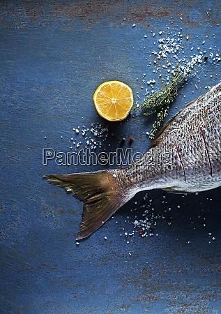 fish fresh