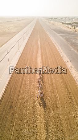 luftaufnahme, von, jockeys, und, kamelen, auf - 27448910