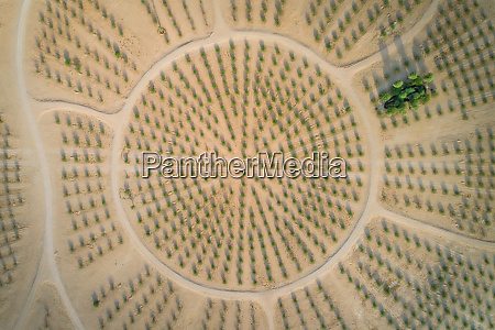 abstract aerial view of an artificial