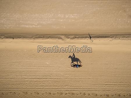 luftaufnahme einer person auf einem kamel