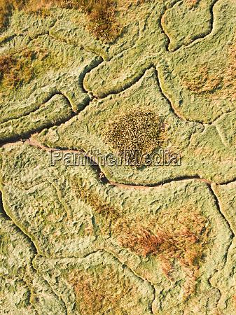 abstrakte luftaufnahme von feuchtgebieten in den