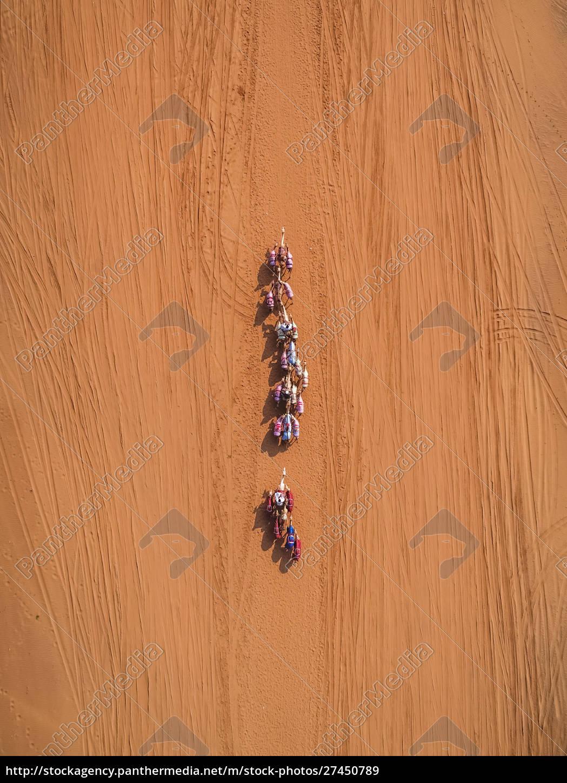 luftaufnahme, eines, kamelrennens, in, der, wüste - 27450789