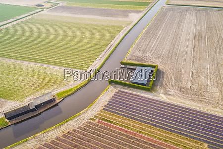 luftaufnahme des kanals zwischen keukenhof tulpenfeldern