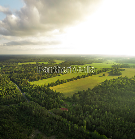aerial view of forest and field