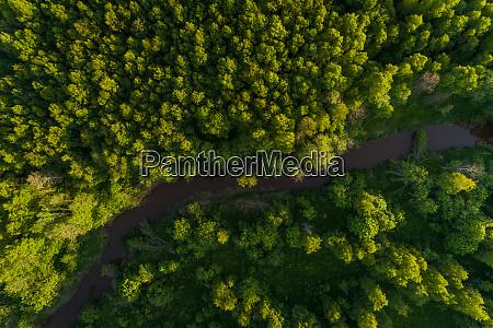 luftaufnahme des flussdurchquerungswaldes in estland