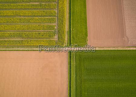 luftaufnahme oben von abstrakten landwirtschaftlichen feldern
