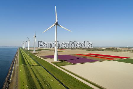 windparks auf und vor der kueste