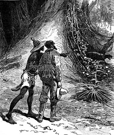 robinsons guyana imagine vines clinging to