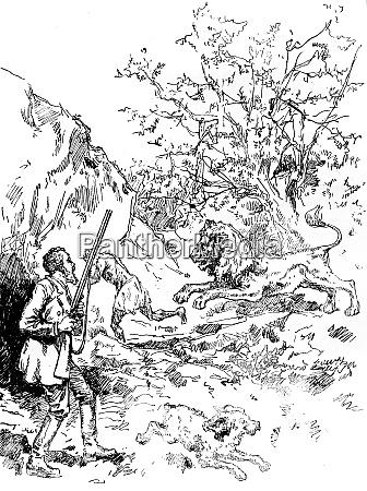 narcissus nicaise gefaehrliche abenteuer im kongo
