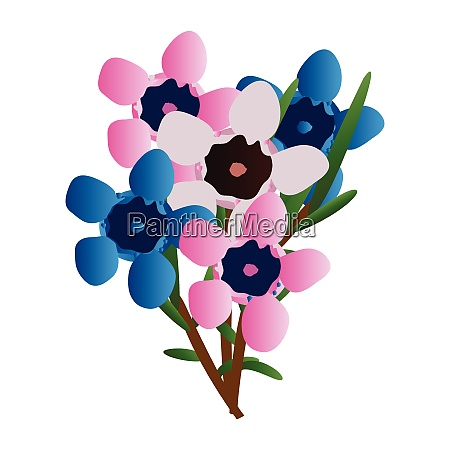 vector illustration of pink and blue