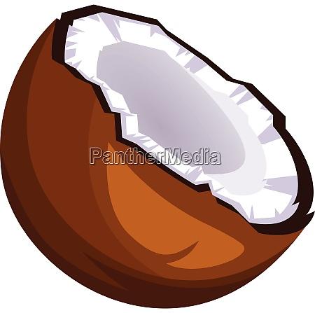 brown coconut cut in half cartoon