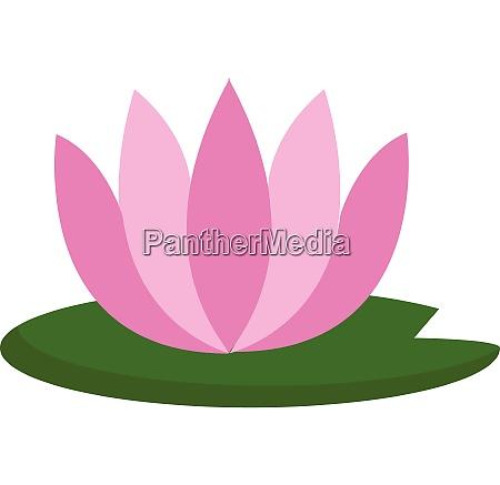 simple pink lotus vector illustration on