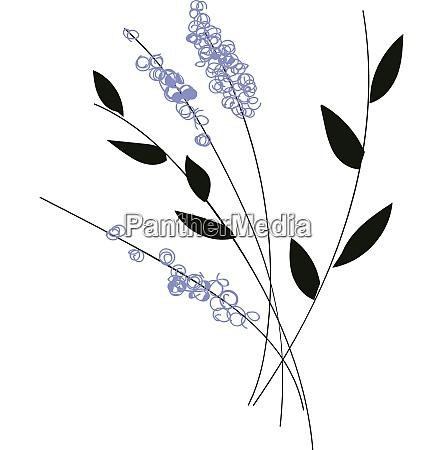 simple vector illustration of violet flowers