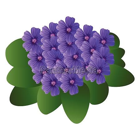 vektor-illustration, von, lila, violetten, blumen, mit - 27487413