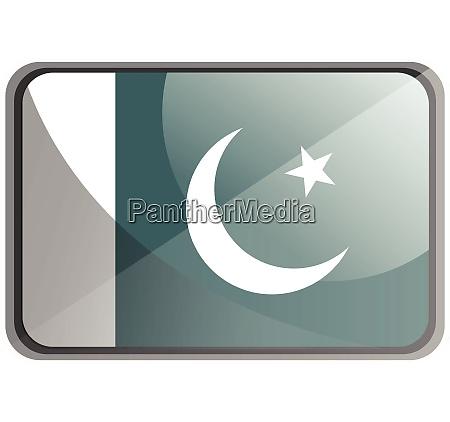 vector illustration of pakistan flag on