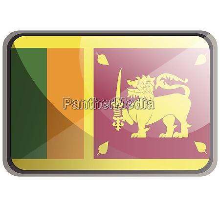 vector illustration of sri lanka flag