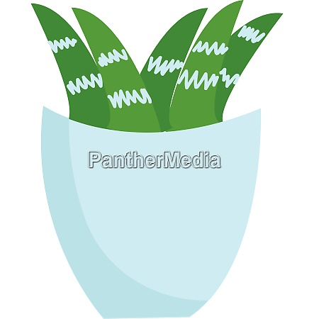 plant in vase illustration vector on