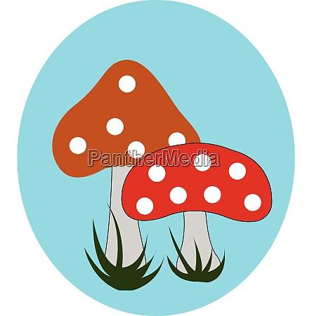 portraet von zwei pilzen ueber blauem