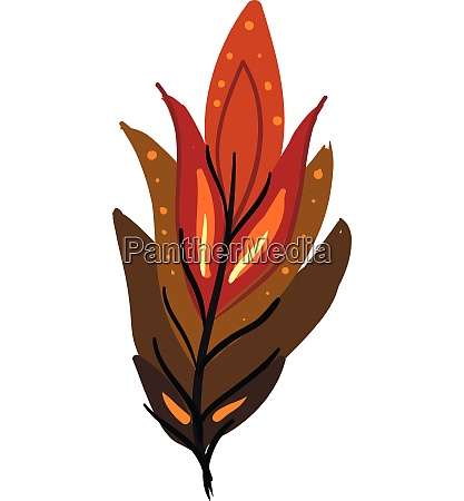 brown and red feather vector or