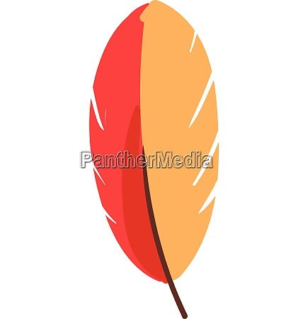 red and yellow feather vector or