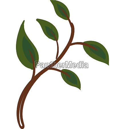 picture of green leaves on a