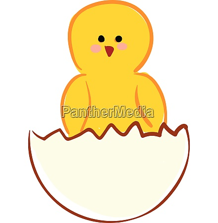 chick from egg vector or color