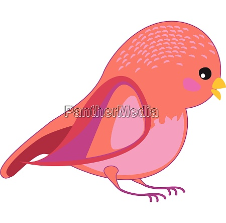 a bird with amazing signs vector