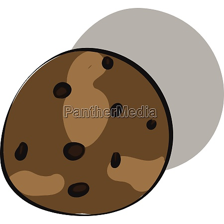 brown colour liver with black spots