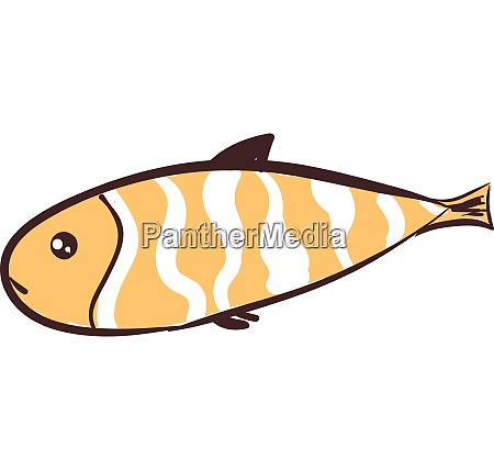 long fish with brown and white