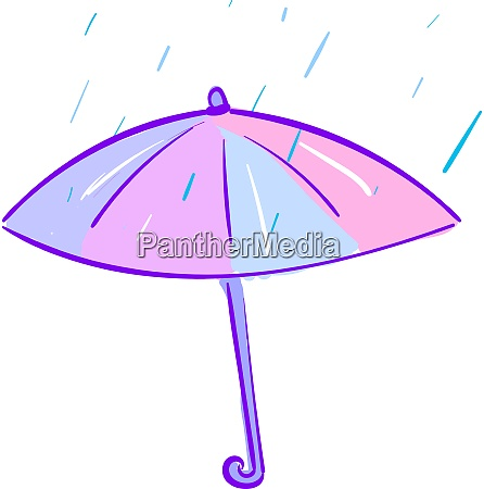 an umbrella vector or color illustration
