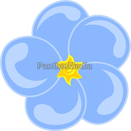 a forget me not flower vector