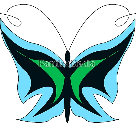 a colorful butterfly vector or color