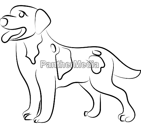 hund skizze illustration vektor auf weissem