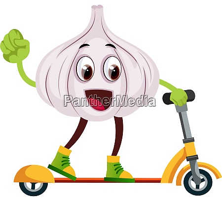 garlic ridding scooter illustration vector on